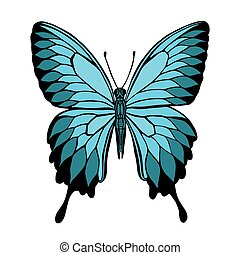 Vector butterfly. Butterfly Papilio blumei. Blue Mountain...