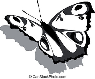Butterfly on paper