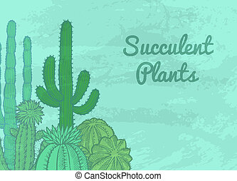 Vector cacti plants background