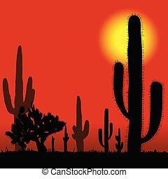 vector, cacto, desierto, ilustración