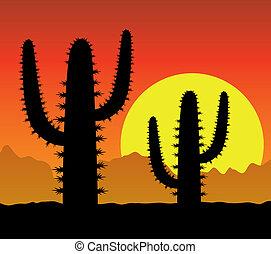 cactus in desert - vector cactus in desert