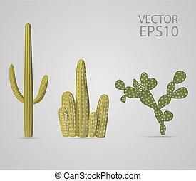 Vector cactus set