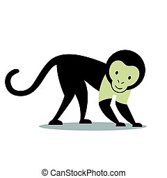 Vector Capuchin Monkey