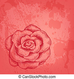 Vector card with hand drawn rose