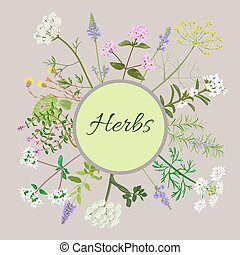Vector card with herbal flowers.