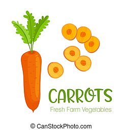 Vector carrots isolated on white background.Vegetable illustration for farm market menu. Healthy food design poster. Cartoon style vector illustration