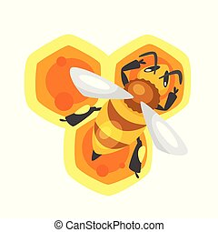 bee sitting on the honeycomb