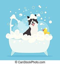 dog taking a bath