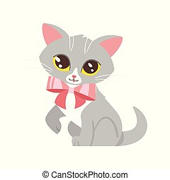 animal pet - cute cat