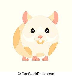 animal pet - hamster