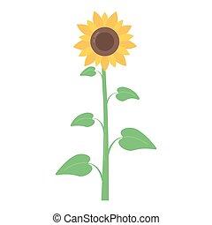 Vector cartoon sunflower