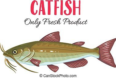 Vector catfish.