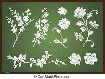 Vector Chalkboard Flower Set