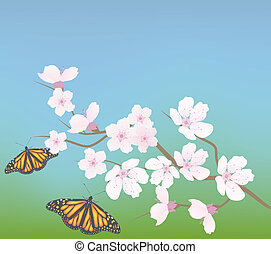 vector cherry branch and butterflies