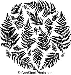 Vector circle frame with fern leaves.