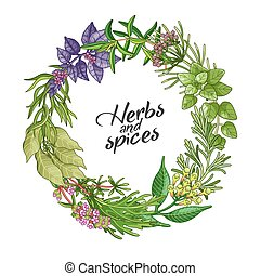 Vector circle wreath template with spices and herbs. Decorative colorful composition with type design