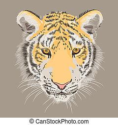 vector closeup portrait of a serious  tiger