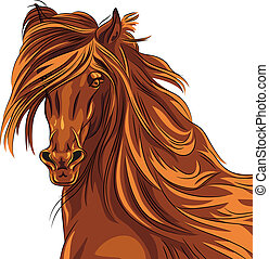 Vector closeup portrait of red horse