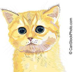 vector closeup sketch cute lilac British  kitten