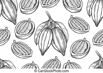 Vector Cocoa tree illustration. Vintage background with hand...