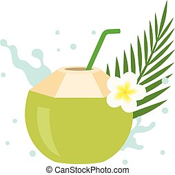 Vector coconut juice with plumeria