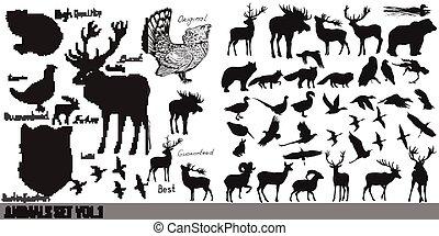 vector, colección, o, súper, mano, dibujado, animales, conjunto, detallado, bosque, inmenso