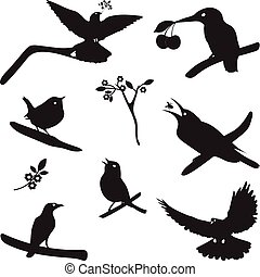 Vector Collection of Bird Silhouettes