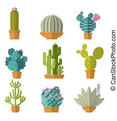 Vector collection of cactus in flat style
