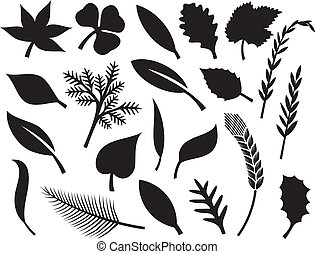 vector collection of leaf silhouette