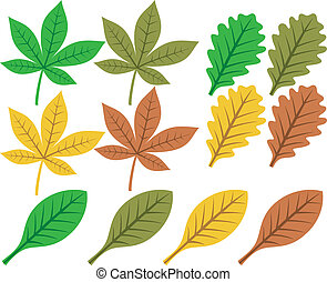 vector collection of leaf silhouett