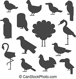 Vector Collection of nature black bird wildlife animal silhouettes.