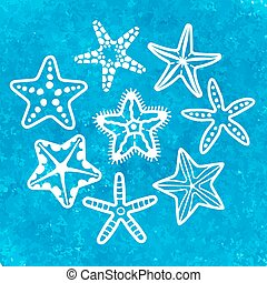 Vector collection of various sea starfish