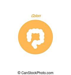Vector colon simple icon