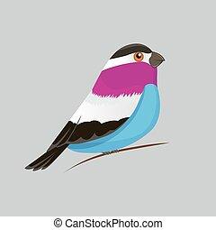 Vector color image of a bird, bird design icon.