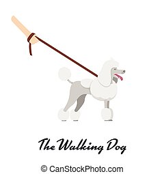Vector color of the dog white Grand Poodle breed with a leash