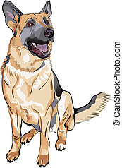 vector color sketch dog German shepherd breed - portrait of ...