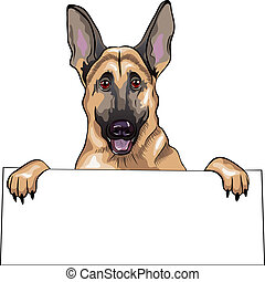 vector color sketch dog German shepherd breed smile -...