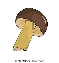 Vector color sketch of mushroom