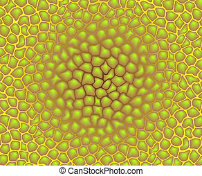 Vector color texture - pattern of cells