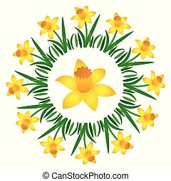 vector colored circular round spring mandala with flower daffodil - adult coloring book page