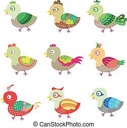 vector colorful birds