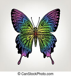 Vector colorful butterfly on white background