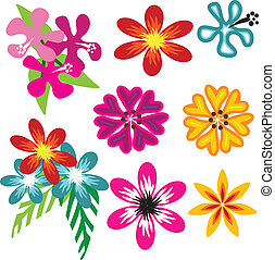 vector colorful Hawaiian flowers - a set of beautiful ...