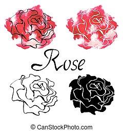vector, colorido, conjunto, con, rosas