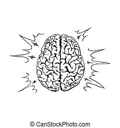 Vector concept of creativity with human brain.
