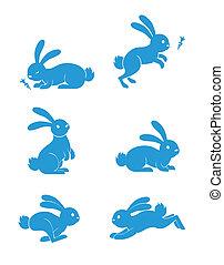 vector, conjunto, conejo
