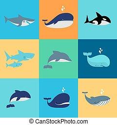 vector, conjunto, de, ballena, delfín, y, tiburón, iconos