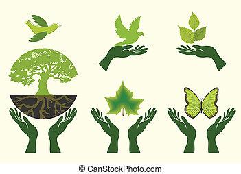 vector, conjunto, icons., naturaleza