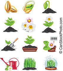 vector, conjunto, jardinería, icono