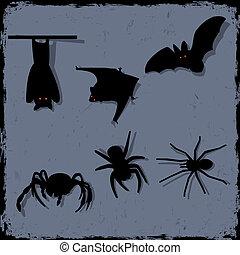 vector, conjunto, murciélagos, arañas